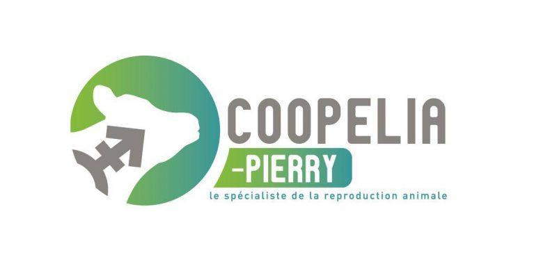 coopelia pierry reproduction animale