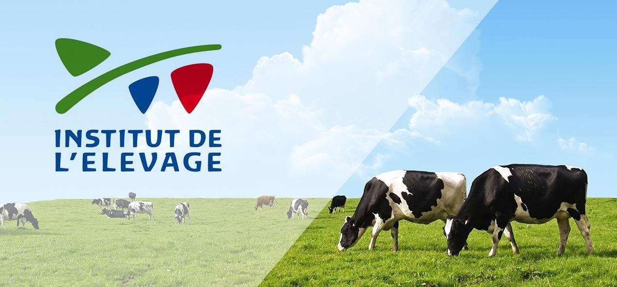 Institut élevage éleveurs solutions